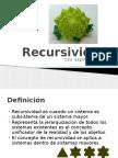 6.Recursividad y Retroalimentación