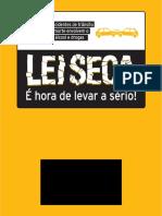 Lei Seca 2013