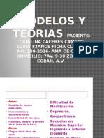 Modelos y Teorias Paciente