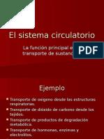 Anatomia comparada.Sist Circulatorio