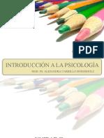 Introduccion Psicologia Clinica
