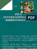 Scaderea Biodiversitatii
