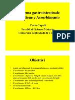 3.Gastro.pdf