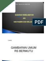POINTERS Presentasi Dir RS Ttg Profil RS & SKP