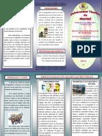 TRÍPTICO DE SOCIOLOGIA CINCY PINARGOTE