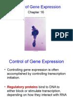 Kontrol Eksp.gen