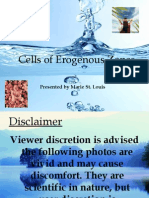 cells of erogenous zones powerpoint final