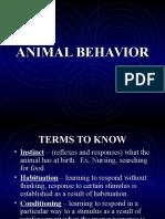 Ecology( Animal Behavior)