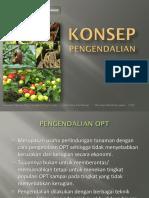 Pengendalian RRK.pdf
