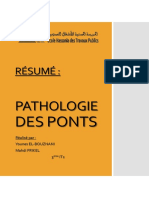 Résumé Pathologie Des Ponts