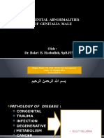 Congenital Abnormalities (2)