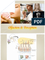 Olfaction and Perception