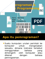 Pemrograman & Mobile Programming