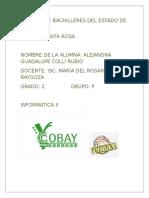 Colegio de Bachilleres Del Estado de Yucatá1