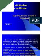 Medicina Regenerativa6 [Compatibility Mode]
