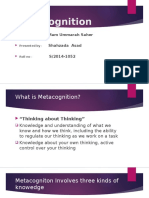 Metacogniton (1)