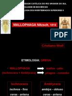 Mallophaga-Cristiano.ppt