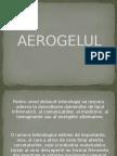 143553458-AeroGelul