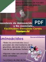 Expo Aminoacidos