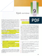 Gartner, Leslie P. - Texto Atlas de Histologia, 2da Edición [9 Tejido Nervioso]