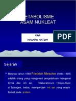 Metabolisme Asam Nukleat 2014