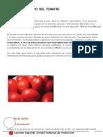 Cultivo Del Tomate Agroecosistemas