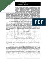 Manifiesto 132
