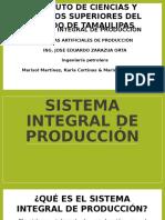 SISTEMA INTEGRAL DE PRODUCCION