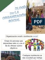 Organizacion-Antropologia Humana