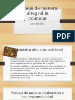 Maneja de manera integral la colmena 2do A apcultura equpo 4.pptx