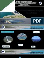Area Tematica 3 - Fuentes Superficiales