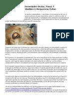 Tratamiento De Enfermedades Ocular, Nasal, Y Dermatológica Atribuibles A Herpesvirus Felino