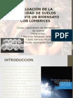 Toxicidad diapos.pptx