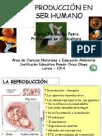 La Reproducción Del Ser Humano-GTP2