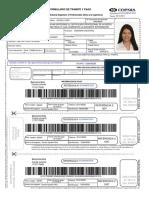 Documento del Registro Telemático (1).pdf