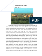 Ekosistem Padang Rumput
