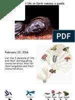 origin of life lecture