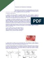 Fala e Mecanismo de Fechamento Velofaríngeo