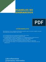 Histología-Celúla