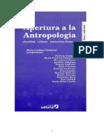 Chiriguin 2006 Apertura a La Antropología
