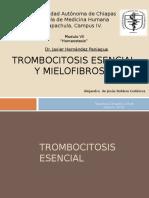Trombocitosis esencial y Mielofibrosis