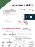 Nucleótidos y Ácidos Nucleicos