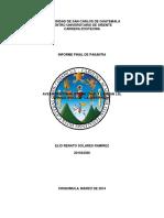 Informe Final de Pasantia Renato Solares
