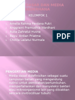 Media Dasar Dan Media Sederhana