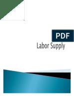 Labor Supp