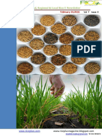 23rd February,Daily Global Regional,Local Rice E_Newsletter by Riceplus Magazine