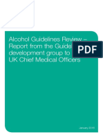 CMO_Alcohol_Report.pdf