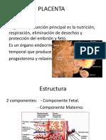 Clase de Femenino y Placenta
