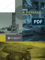 Informe Anual 2014 Spcc