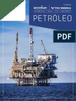 Caderno Petroleo FGV 1510